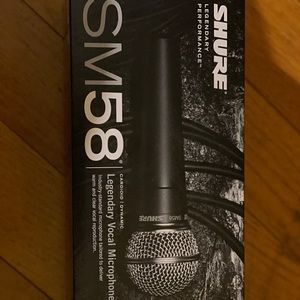 Professional vocal microphone.